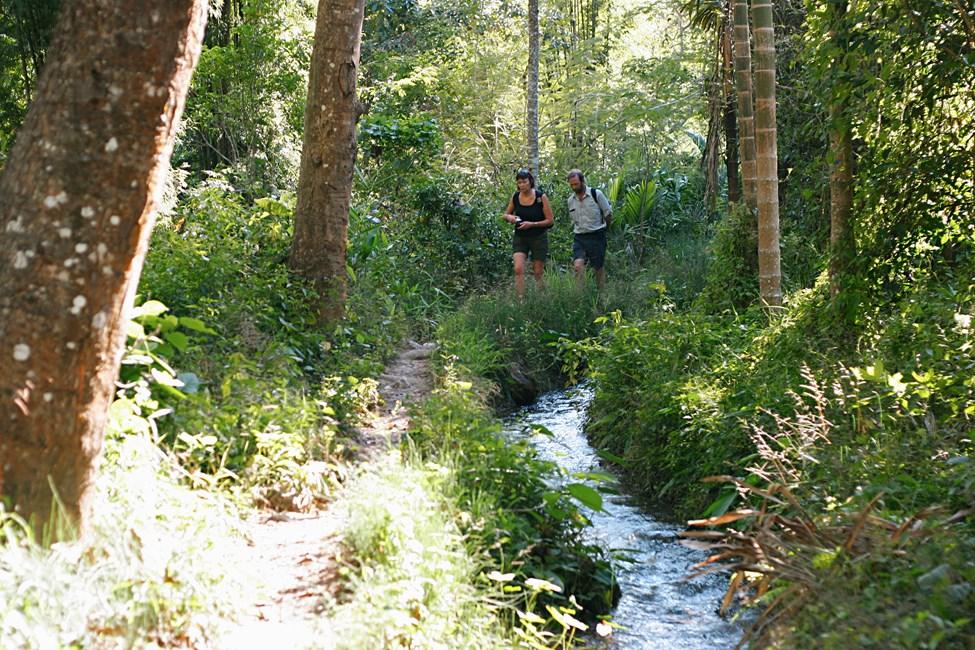 Vaellusretki Chiang Maissa