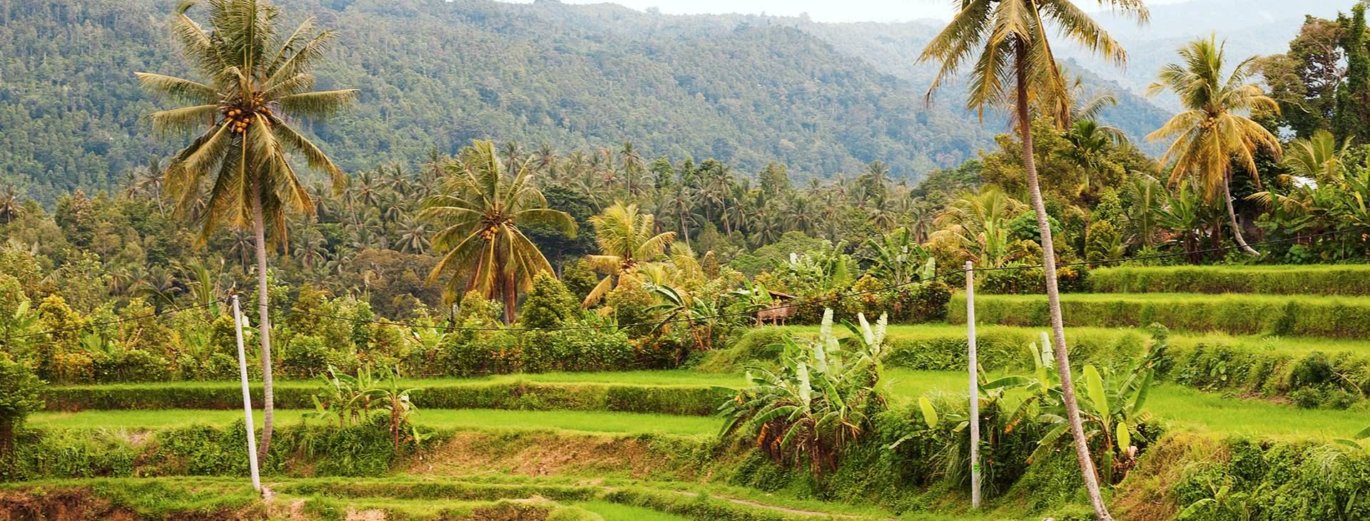 Varaa Tjäreborgin matka Balille, Indonesiaan