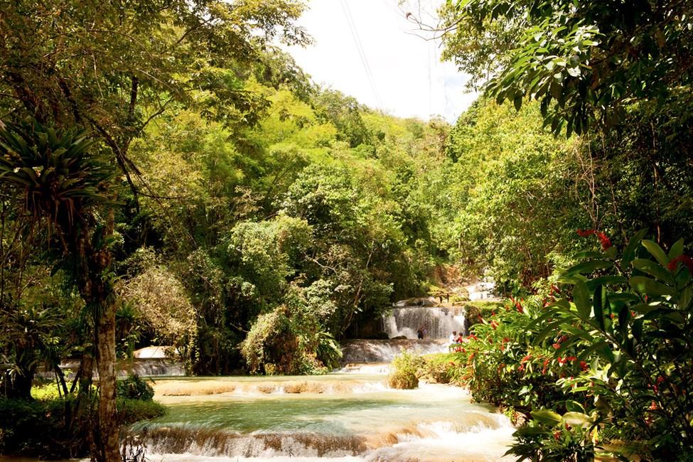 Black River, YS Falls