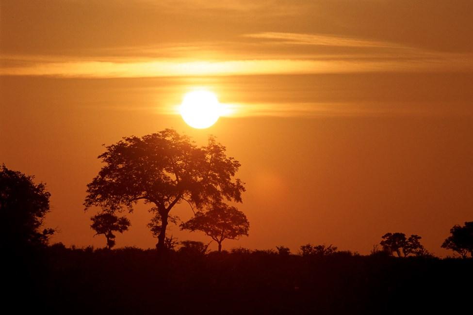 Krugerin luonnonpuisto