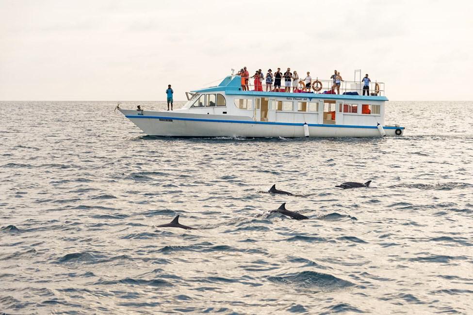 Päiväretki veneellä