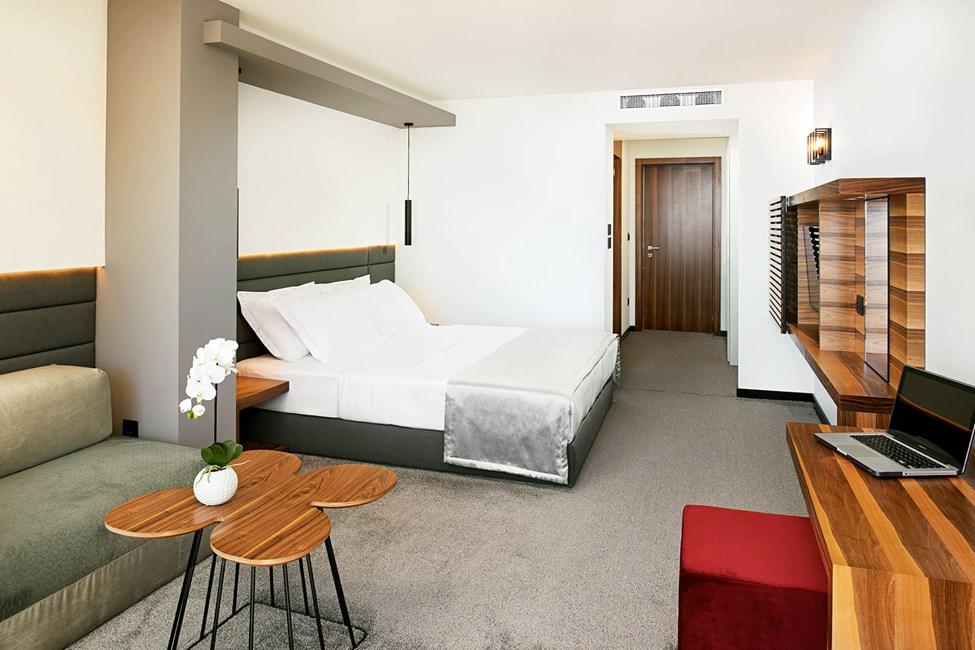 Kahden hengen huone ja merinäköala tai rajoitettu merinäköala