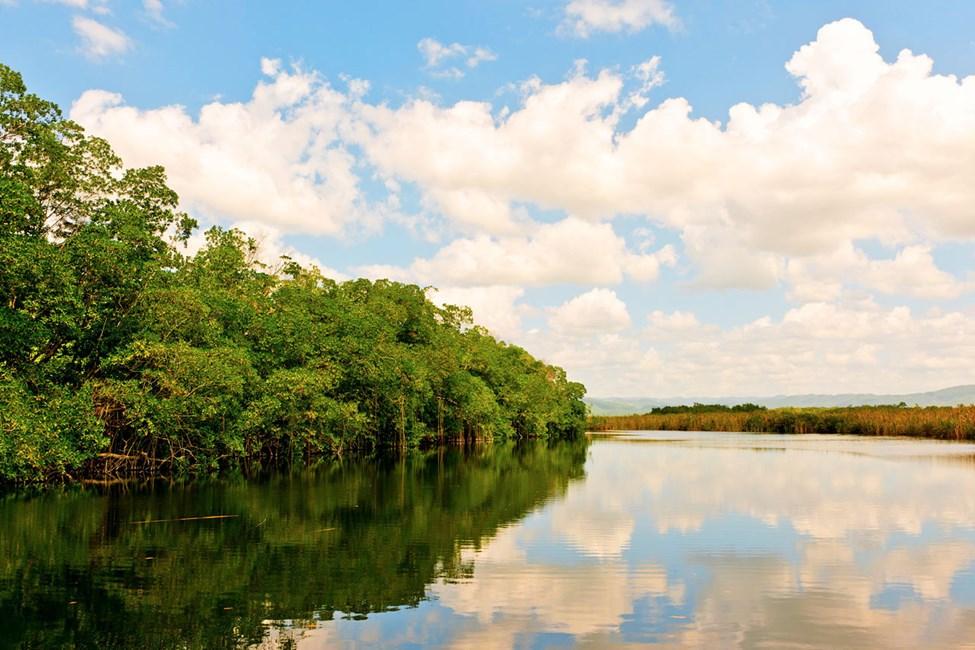 Black River - suosittu retki Montego Baystä