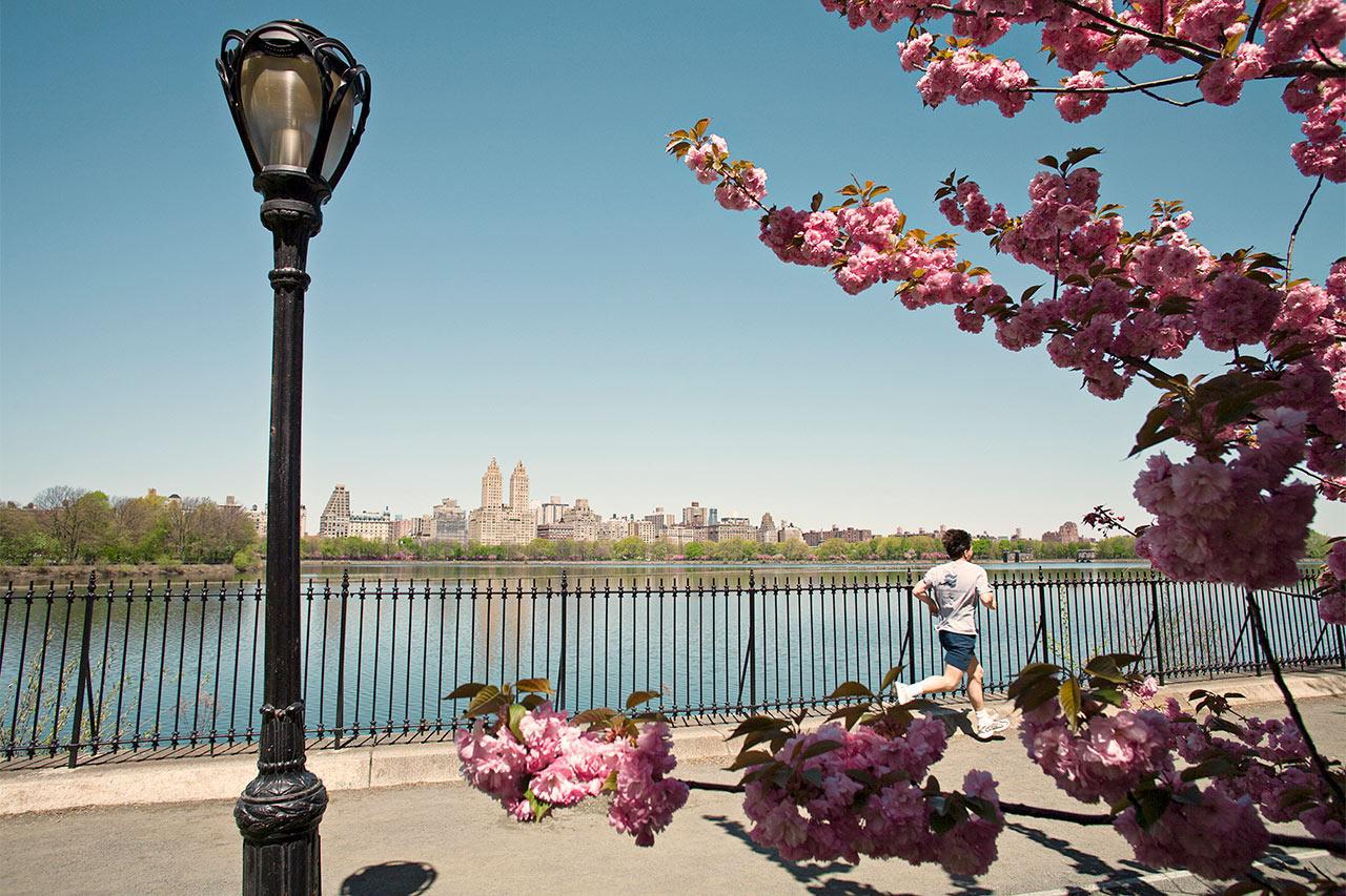 paras tapa kytkeä vuonna NYC