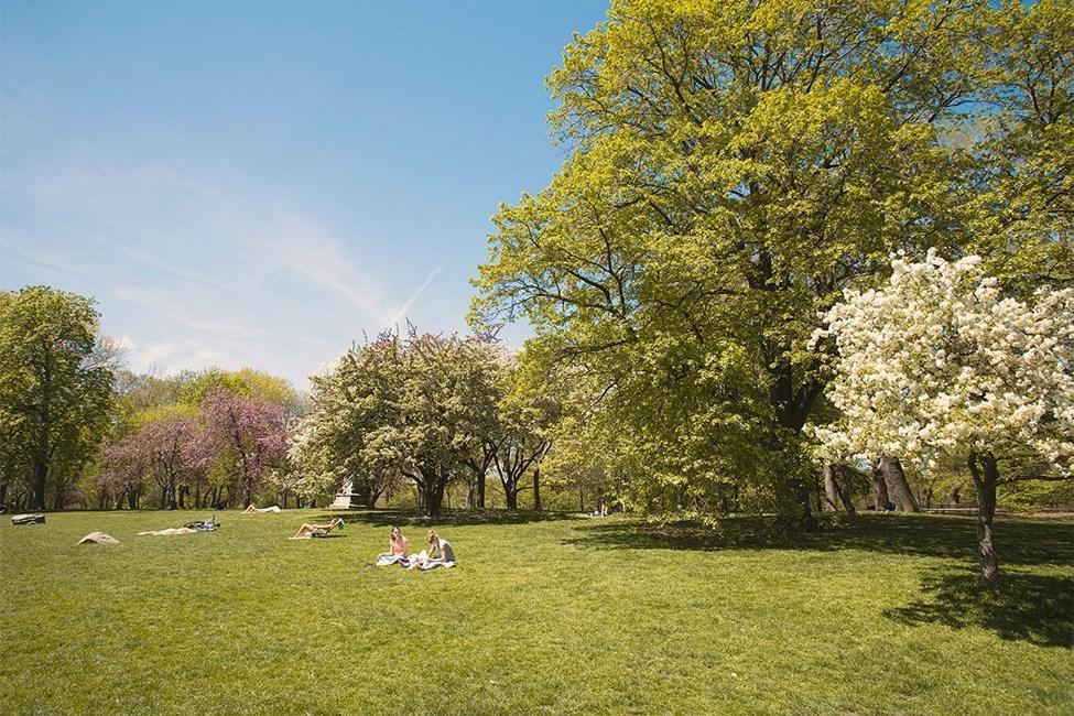 Central Park - Keskuspuisto