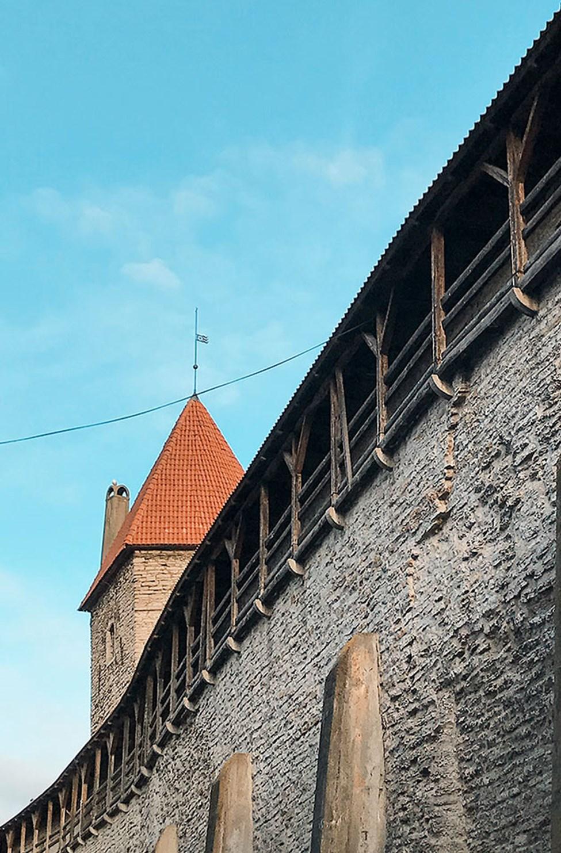 Pala Tallinnan Vanhaakaupunkia ympäröivästä muurista