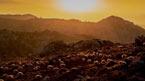 Auringonlasku Kreetalla