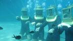 Koe vedenalainen maailma Undersea Adventuren kanssa
