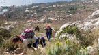 Vaellusretki Biokovon huipulle
